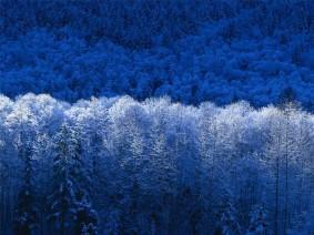 inverno.jpg