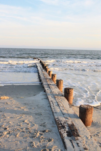 ocean_Tracy Wasicek