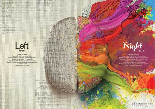 cerebro-esquerdo-e-direito