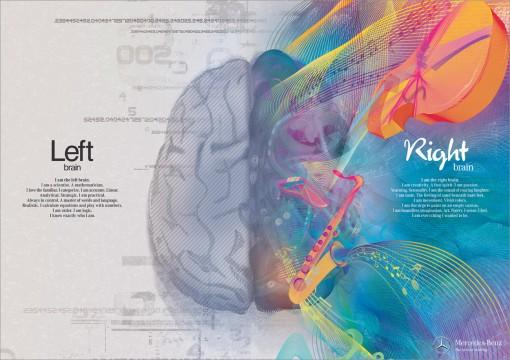 cerebro-lados 03