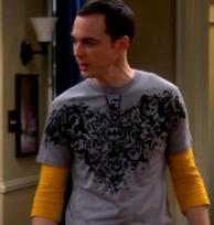sheldon_batman_shirt_the_septum_deviation1