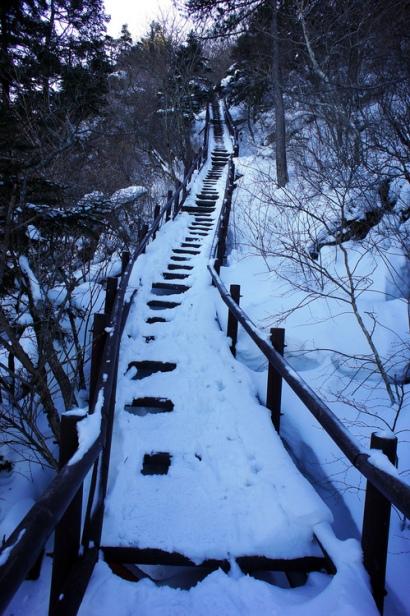 caminho de neve