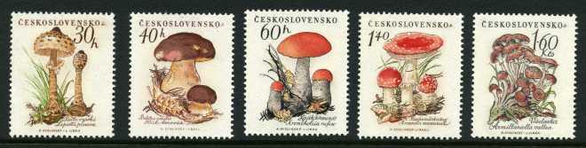Czechoslovakia_1958