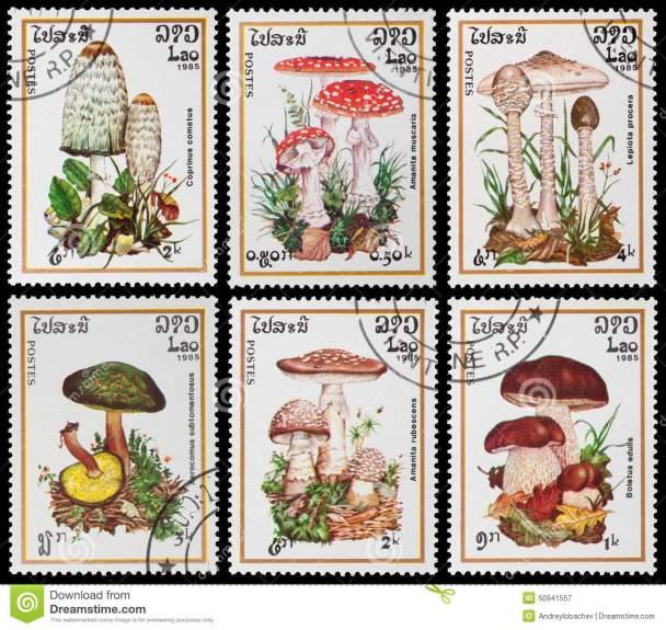 Lao poisonous-mushrooms-laos-circa-post-stamp-printed-laos-shows-circa-50941557