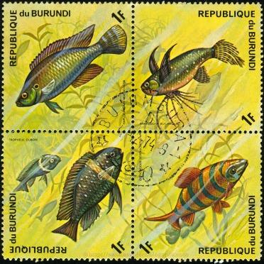 5a_burundi