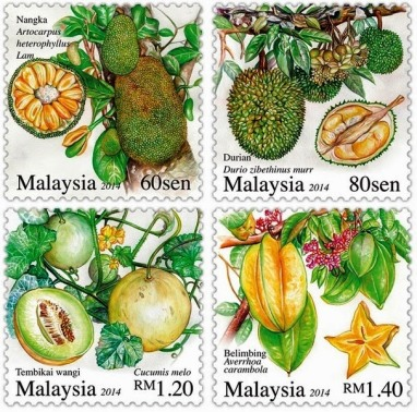 fruta malaysia