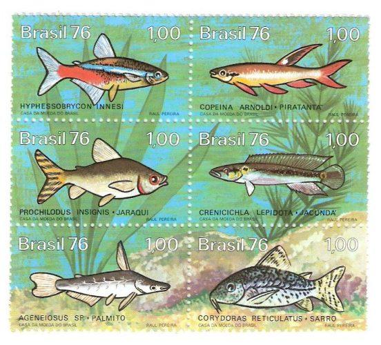 lindos-selos-rhm-c-939944-peixes-de-agua-doce-no-brasil--7517-MLB5243643514_102013-F