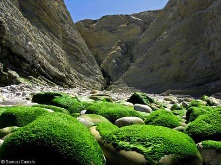 pedrasverdes